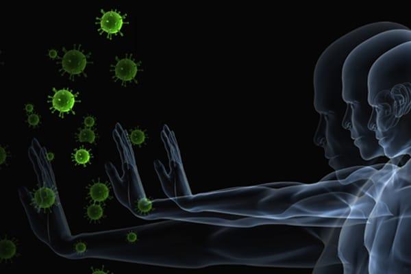 ghee immunity